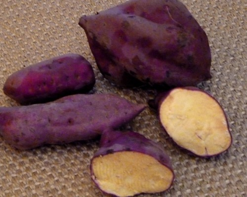 "Batata-Doce ""roots of reddish skin and yellow flesh"""