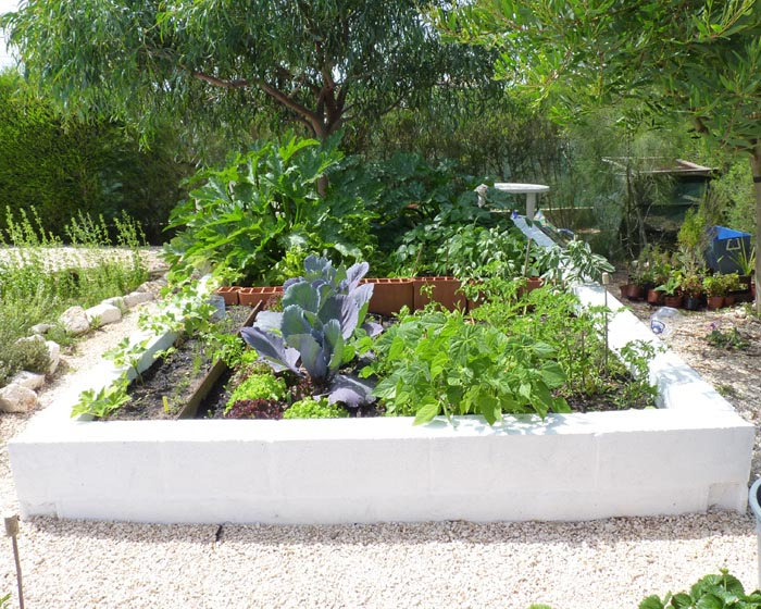 My Raised Vegetable Garden 14/05/11