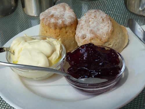 Devon Clotted Cream Tea - A foodies heaven!