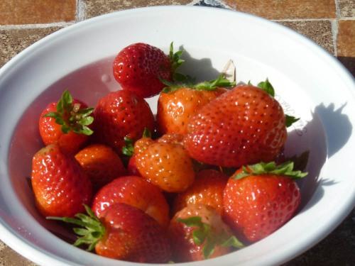 My home grown stawberries!