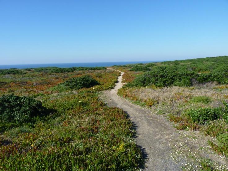 Pathway to God's Garden