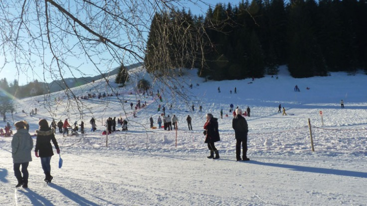 The gentle snow-covered slopes were a hive of activity