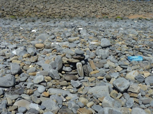 "Can you spot the carefully ""Arranged"" pebble?"