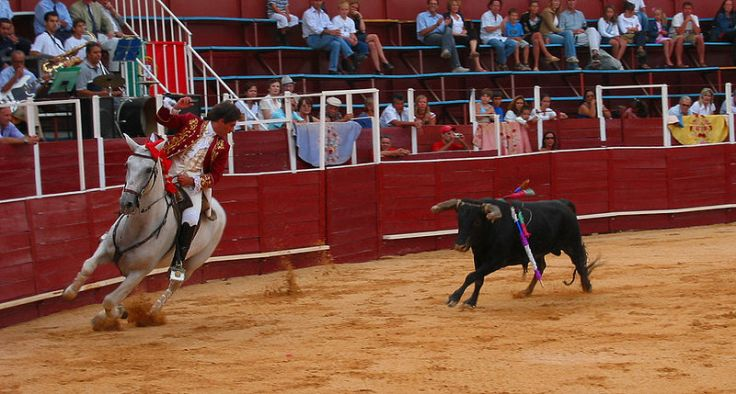 Bullfighting in Portugal - Image from Wikipedia
