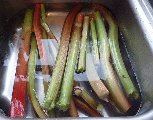 Rhubarb stalks ready for cooking