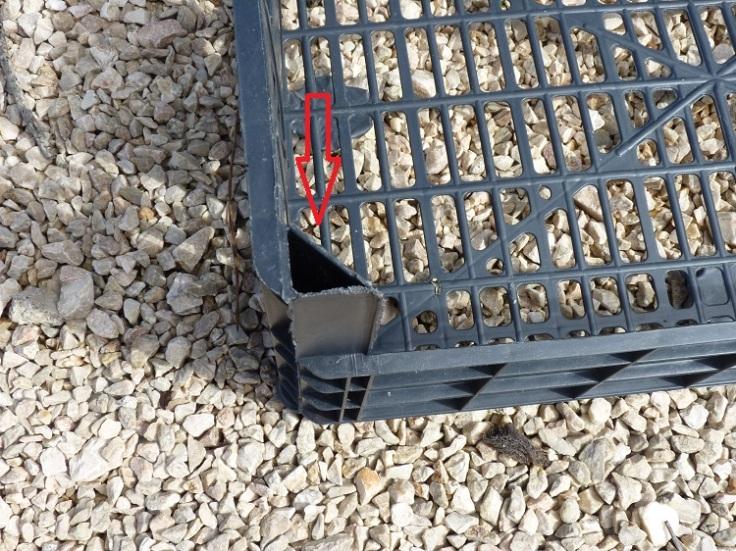 Plastic crate - corner holes