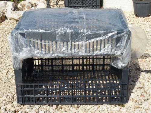 connect the two plastic crates with sticks