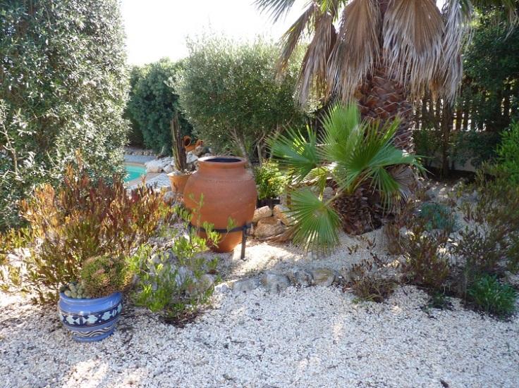Garden - 12th November Still work in progress