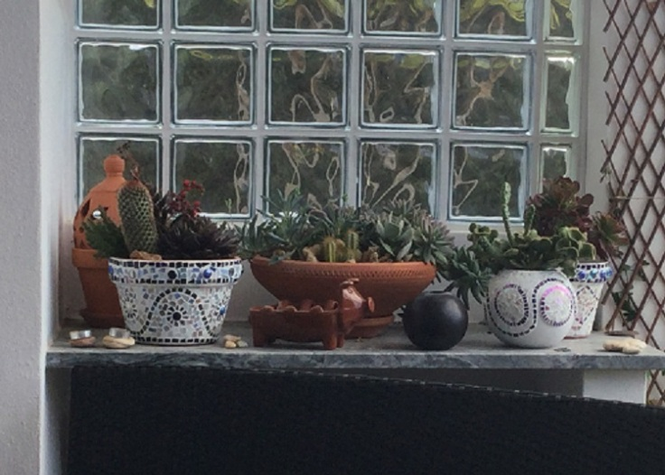 mosaic pot succulent display