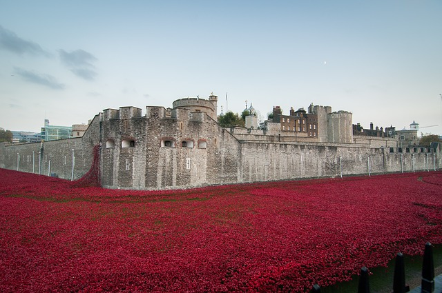 Carpet of Poppies, Tower of London