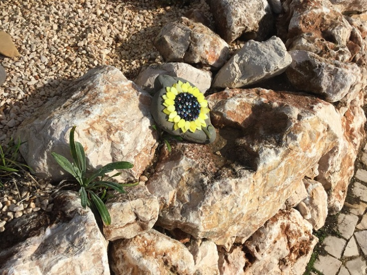 Sunflower Pebble