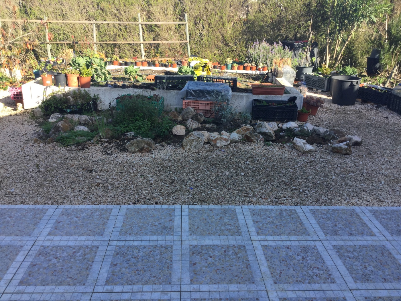 Gardening 'To Do' List – Six Projects for 2019 – Piglet in