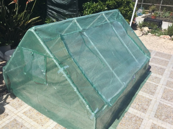 Mini Plastic Greenhouse