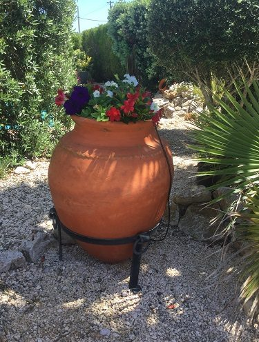 Ali Baba terracotta pot