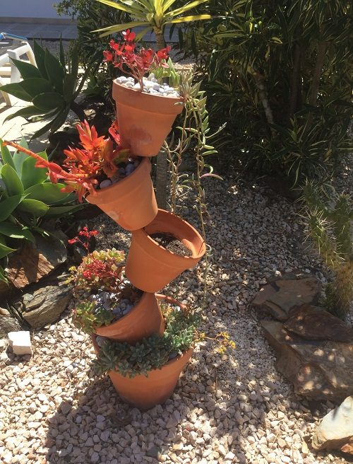 Terracotta Pot display