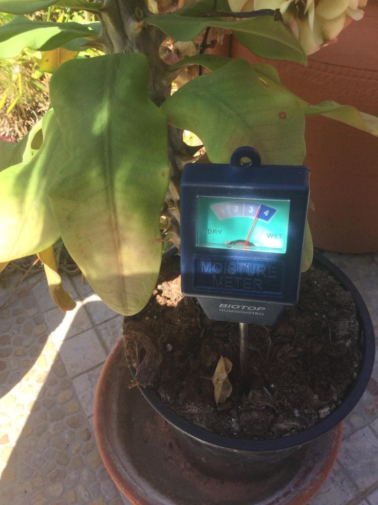 Moisture tester for soil