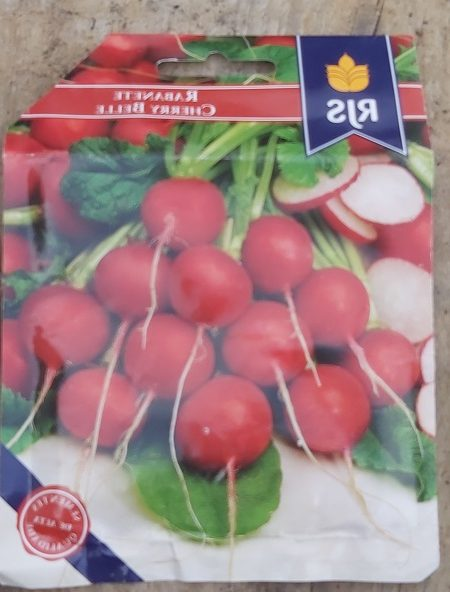 Growing radish from seed - Jan 2020