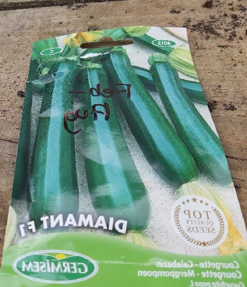 Courgette F1 diamante
