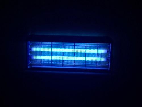 UV Mosquito light