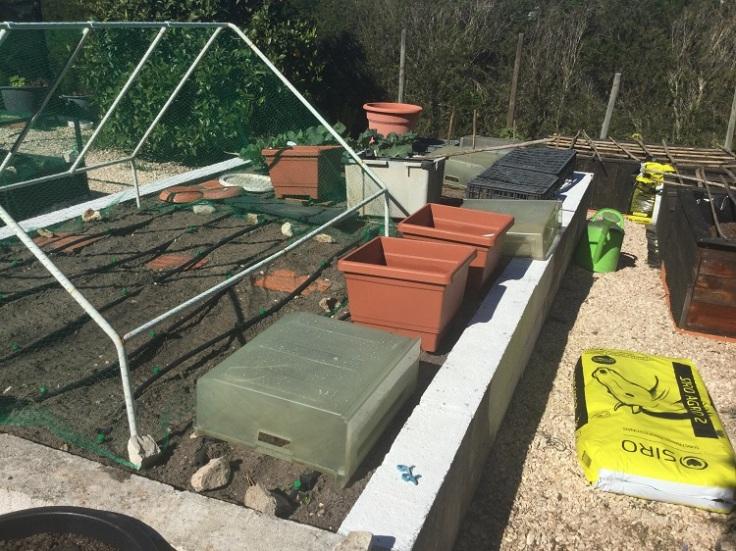 PLAN B Cat barricade on raised vegetable garden